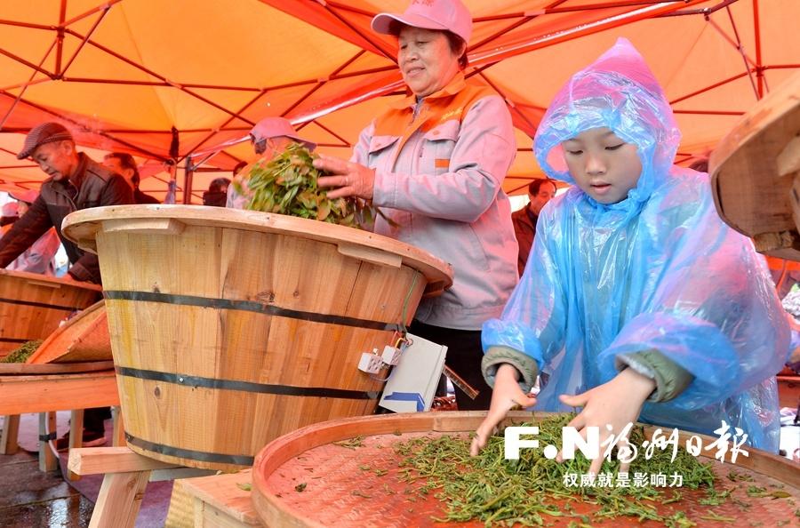 罗源首届七境茶文化节开幕 茶满七境香飘八方
