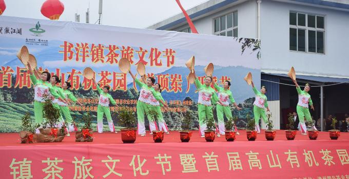 茶旅深度融合!漳州南靖舉辦首屆高山有機茶園開采節