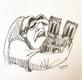 卡西莫多是谁 巴黎圣母院大火卡西莫多的钟楼没了