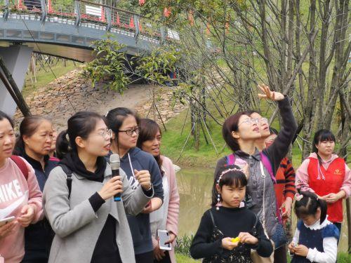 金鸡讲堂第七期:亲子户外课 边认植物边游园