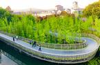 福建福州:春日福道 绿树掩映 春色尽收眼底