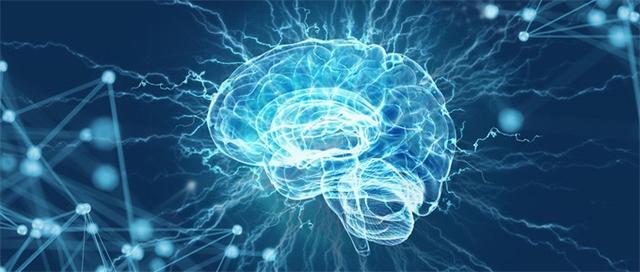 """科学家成功复活死亡猪脑部分细胞 但离""""死而复生""""还有很远"""