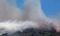 烧烤引山火罚2亿引热议 引发山火的真正原因是什么罚2亿有意义吗