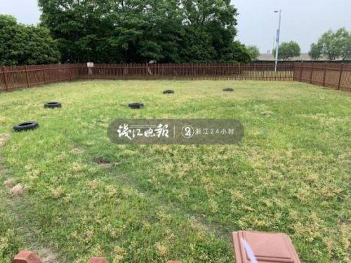 杭州公共遛犬區在哪里?杭州為什么設公共遛犬區有哪些規矩