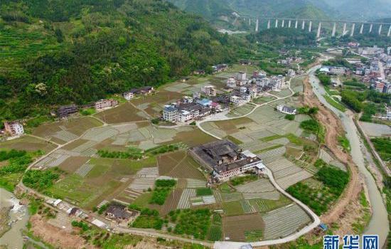 福建永泰:全鎮種植花生2500多畝 助農增收