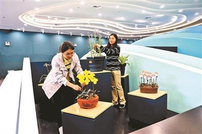 """世园会展出300余种濒危植物 """"稀世之花""""亮相"""