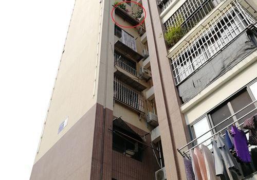 福州一男童从8楼坠落幸无大碍 6楼?#24052;?#23567;花圃?#20154;?#19968;命