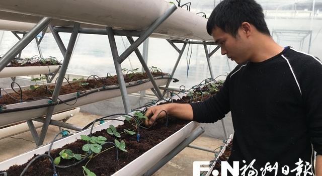 福州现代农业插上科技翅膀