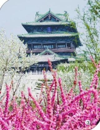 北京世园会:在园艺中感悟自然之美