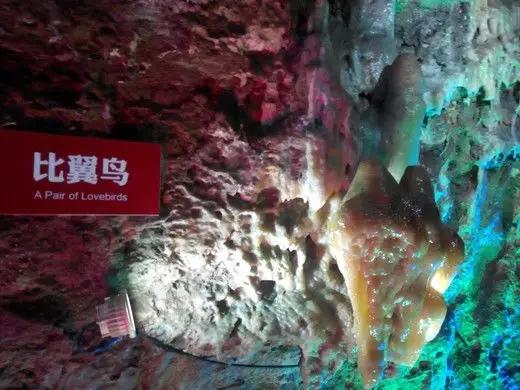 景区百万年钟乳石遭破坏详细新闻介绍?钟乳石被谁破坏了严重吗
