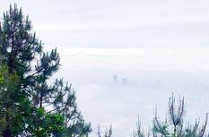 福州:云里雾里看鼓岭 似梦似幻似仙境
