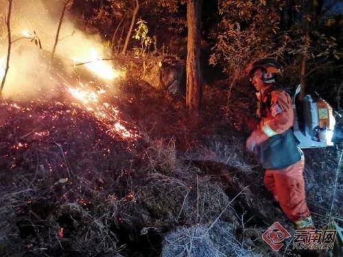 丽江玉龙发生山火详细新闻介绍最新消息 丽江玉龙发生山火怎么引发的?