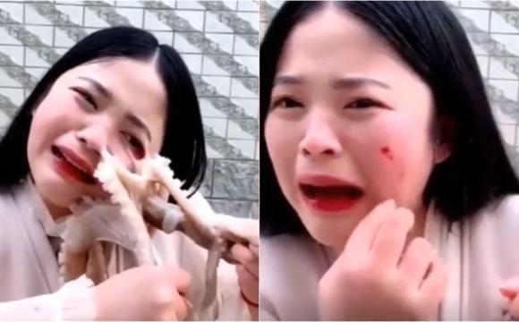女主播遭章鱼毁容视频怎么回事 章鱼怎么导致女主播毁容截图曝光