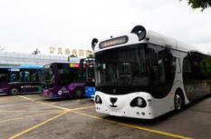 """福州:新能源无人驾驶""""熊猫智能公交""""亮相"""