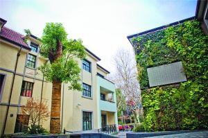 丰富城市园林绿化空间层次:墙上花园让绿意蔓延