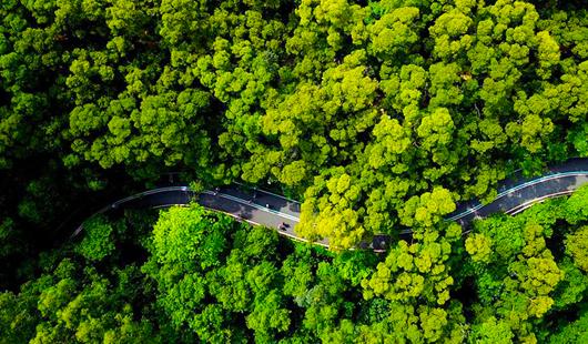 福建省福州市:逛城市綠道 享綠色生活