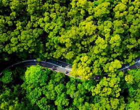 福建省福州市:逛城市绿道 享绿色生活