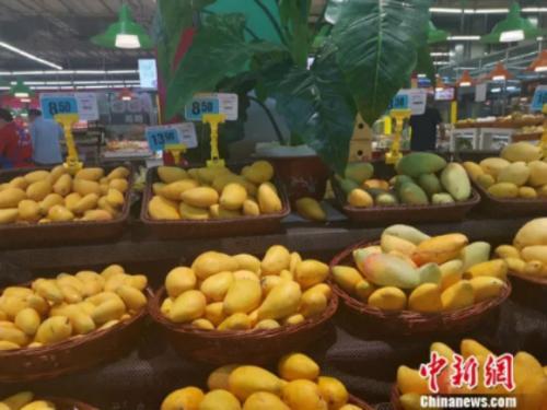 图为超市里的芒果。 谢艺不雅 摄