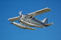美国两架飞机相撞怎么回事 5人死亡1人失踪10人受伤