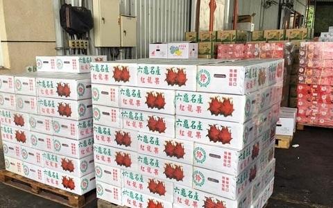 韓國瑜落實政見拼經濟 五種高雄水果銷往香港