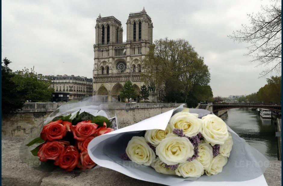 钱够了?巴黎圣母院重建筹款机构停止募捐引争议