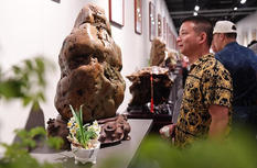 2019中國·漳州海峽兩岸賞石文化交流展開幕