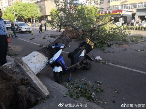 北京大风砸中人怎么回事?外卖小哥伤重离世现场图