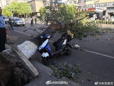 北京大风砸中人最新情况4人死亡!北京大风砸中人现场图曝光