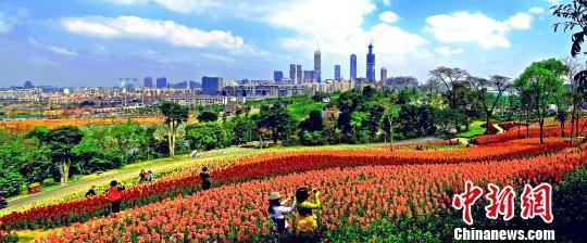 2019中国—东盟市长论坛 将聚焦城市可持续发展