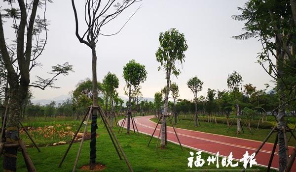 """福清湿地公园A段下月开放 占地123亩开辟""""城市菜地"""""""
