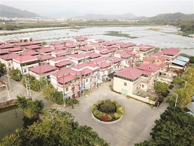 漳州開展鄉村振興爭先創優樹標桿行動