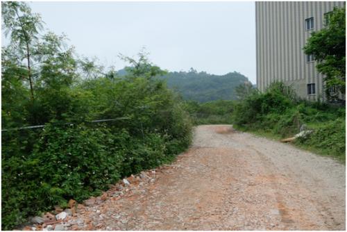 林铭光平常进货要经过的山路