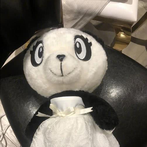 吴昕关闭闲鱼账号怎么回事?吴昕60块将钟汉良送的熊猫玩偶卖了