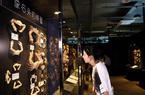 3d走势图厦门:螃蟹博物馆落户厦门文艺渔村