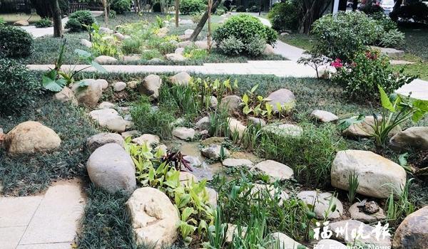 福州白马河畔湿地公园建成开放 小河贯穿小园别有意趣