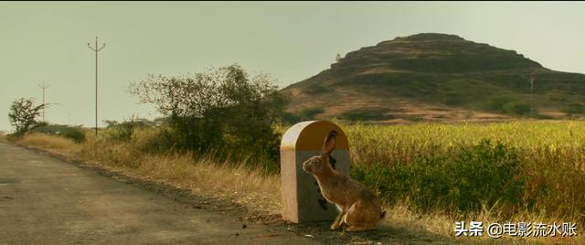 《调音师》:一部被吹爆的电影,称得上好看却未必算是经典