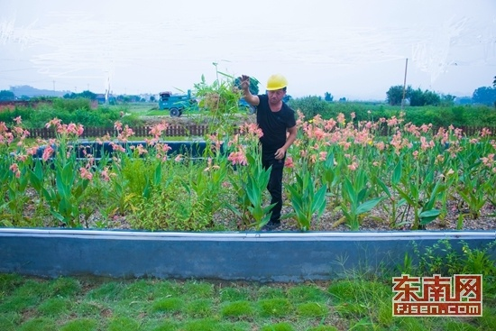 长泰县坚持城乡融合发展导向——村里的生活不比城里差
