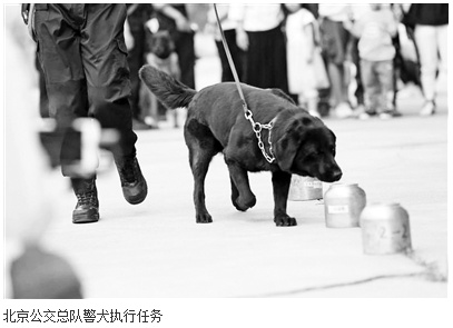 超声波指导警犬详细新闻简介?北京警方:已申报专利