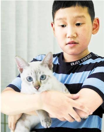 学生申请带猫上学 校长:同意