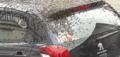 蜂群爬滿汽車頂蓋現場圖片曝光 蜂群爬滿汽車頂蓋原因是什么