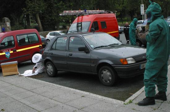 養蜂人從一輛汽車里撿出蜜蜂。(圖源:推特)