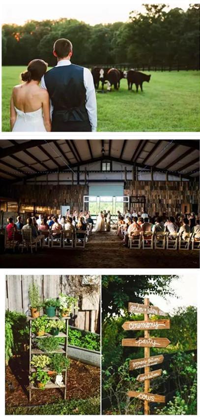 看多了身邊婚禮的繁華 方知這才是我想要的