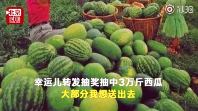 中3萬斤西瓜事件來龍去脈 大學生中3萬斤西瓜怎么回事?