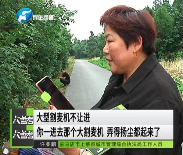 农妇手割70亩小麦是真的吗?河南上蔡县为什么要求农妇手割小麦