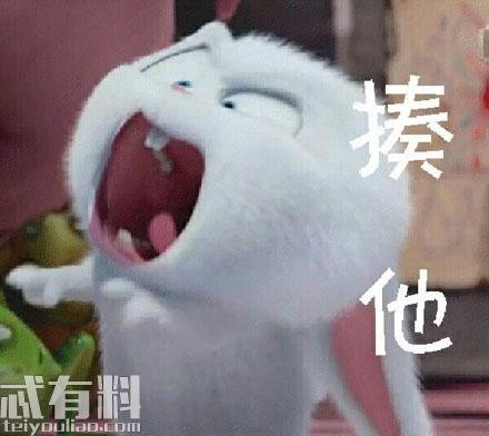 爱宠大机密兔子表情包大全 小白为什么憎恨人类结局是什么