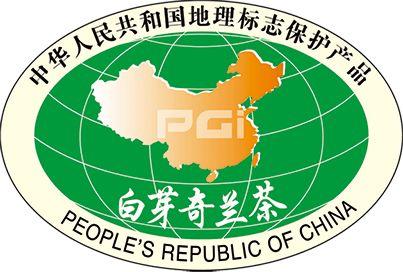 以茶为媒,乡村振兴,漳州企业助力革命老区村茶产业发展