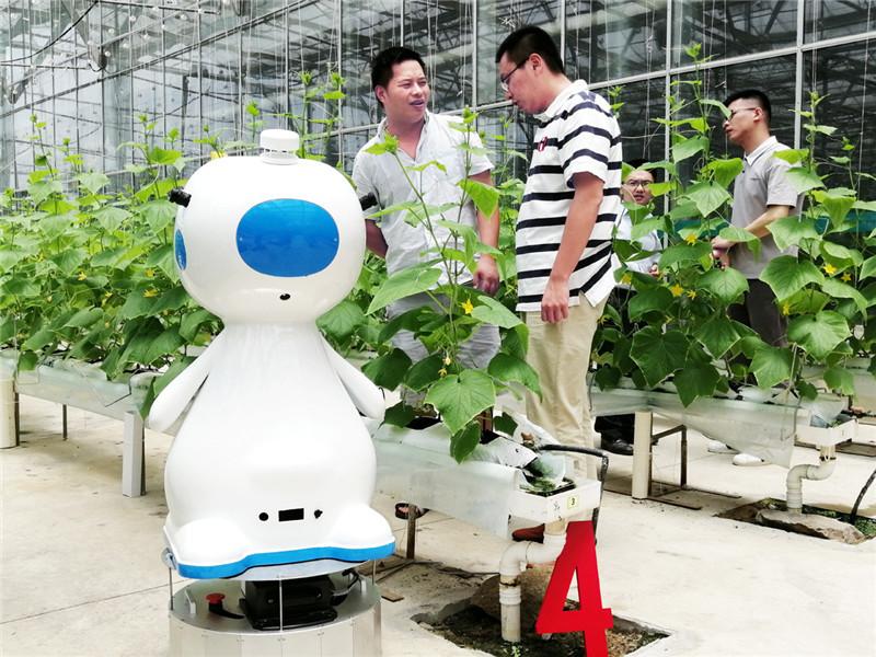 中国以色列示范农场成为福建首家5G覆盖农业园区