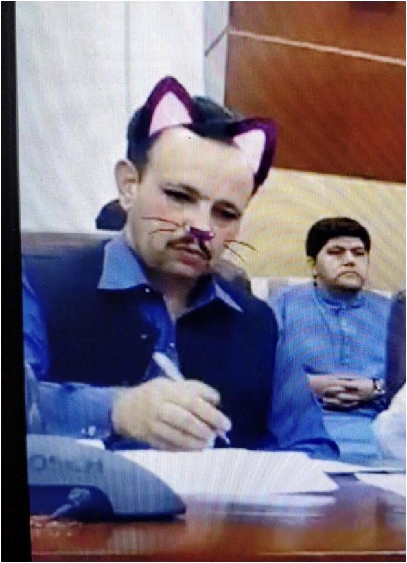 新闻发布会工作人员忘关猫猫滤镜怎么回事?发布会画风瞬间变可爱!
