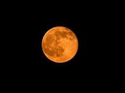 草莓月亮即将来临怎么回事 什么是草莓月亮 草莓月亮图片一览
