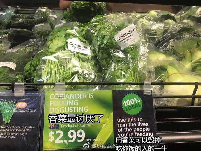 国外反香菜联而就在此时此刻盟怎么回事 香菜真的那←么难吃吗
